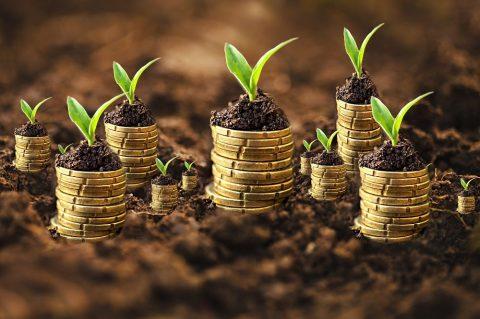 Kviečiame naudotis ES parama (15000 eur) smulkiems uogininkystės ūkiams įkurti/plėtoti iki birželio 30 d.